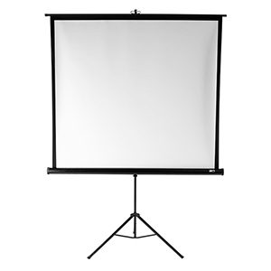 "Elite 85"" Projection Screen"